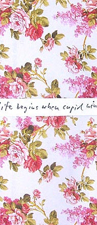 Life Begins When Cupid Wins I